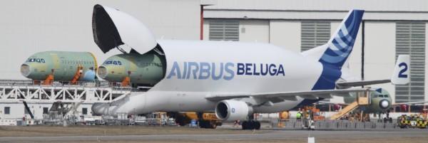 Les avions cargo : Le transport de marchandises 1