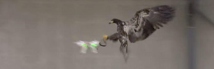 Comment lutter contre les drones près des aéroports ? 5